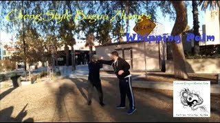 Cheng Style Bagua Zhang's Whipping Palm   Ground Dragon Martial Arts