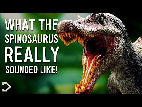 What Did Spinosaurus Really Sound Like