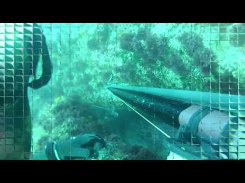 Pesca Submarina Rikisub en Barbate