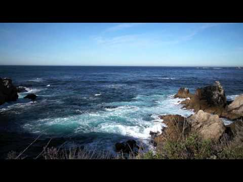 Point Lobos State Nature Reserve.mov