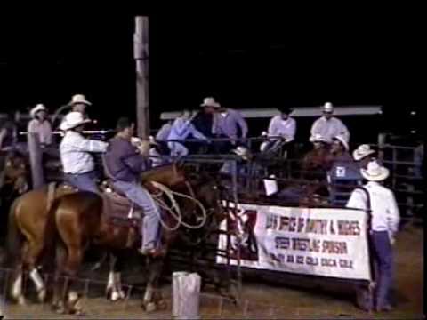 Calf Roping Horse Calf Roping Horses For Sale