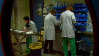Veterinary Medicine at UCD