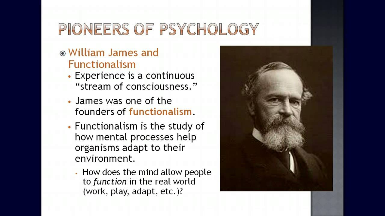 a brief history of abnormal psychology Abnormal psychology is concerned with understanding the nature, causes, and   a vignette (brief description) about a person who showed symptoms of mental .