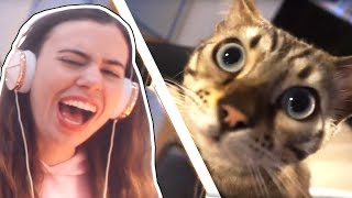Download Lagu REACTING TO FELIX THE CAT OPENING OUR SURPRISE GIFTS!!! - CRAINER & THEA'S CAT! Gratis STAFABAND