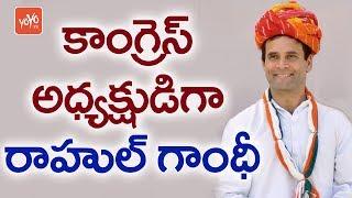 కాంగ్రెస్ అధ్యక్షుడిగా రాహుల్ గాంధీ  | Rahul Gandhi As a New President of Congress
