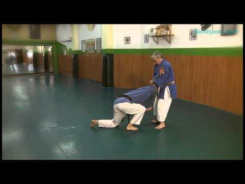 Goshin Karate jutsu 5. Luxaciones (Kansetsu waza)