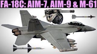 FA-18C Hornet: Aim-7, Aim-9 & Guns Weapons Tutorial | DCS WORLD