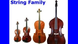 The Story of the String Family