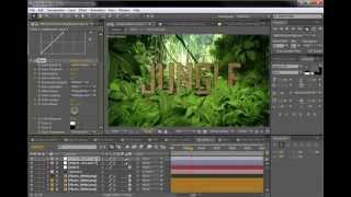 After Effects - Andrew Kramer (Video-Copilot)