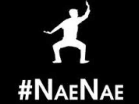 Drop That NaeNae By @WeAreToonz (OFFICIAL #NaeNae Song)