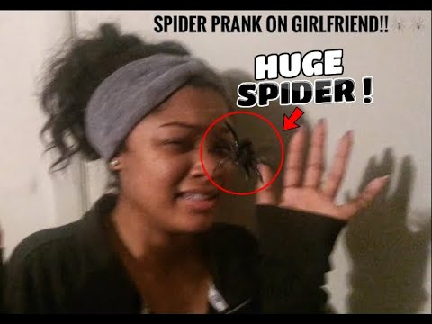 SPIDER PRANK ON GIRLFRIEND !! (GONE WRONG SHE GETS SERIOUSLY HURT) I FEEL BAD  :(