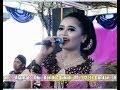 Kembang Rawe - Rini Cokek - Campursari Sekarmayank/sekar Mayang Call:+62812259