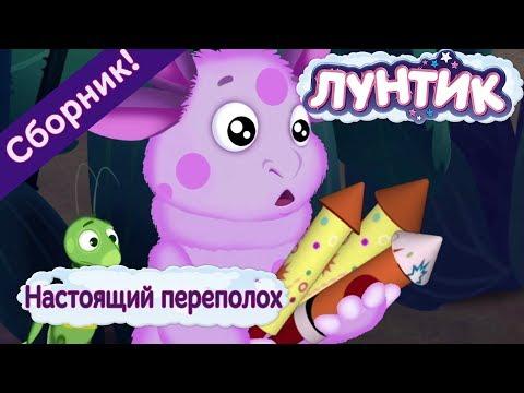 Настоящий переполох 💥 Лунтик 💥 Сборник мультфильмов 2018