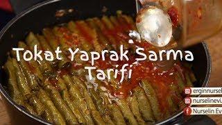 Tokat Yaprak Sarma Tarifi
