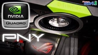 PNY RTX 2080 8GB XLR8 OC, An Overpriced & Average RTX 2080
