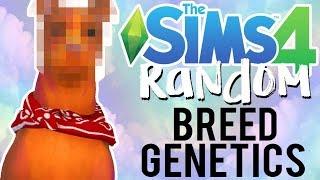 The Sims 4 Random Genetics Challenge: Dog Breed Mixer Edition