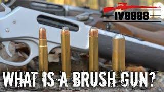What is a Brush Gun?