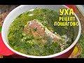 Уха рыбацкая рецепт пошагово