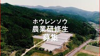 佐賀市チャンネル 佐賀市PR