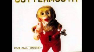 Watch Guttermouth Perfect World video