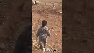 Funny video of baby