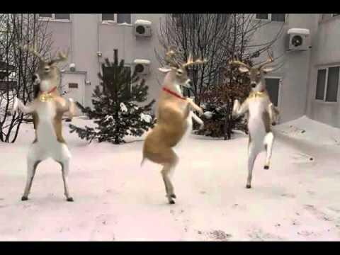 Скачать музыку где танцует лось