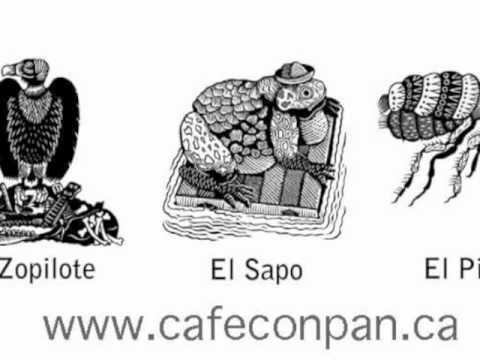 el sapo el zopilote y el piojo performed by Café Con Pan