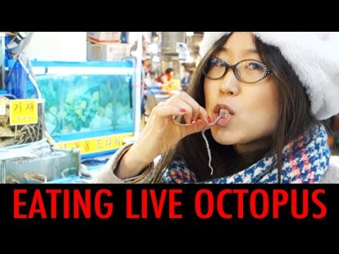 Octopus Eat Eating Live Octopus at