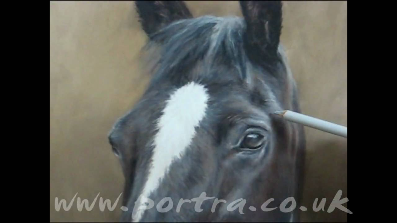 How To Paint Horses With Acrylics