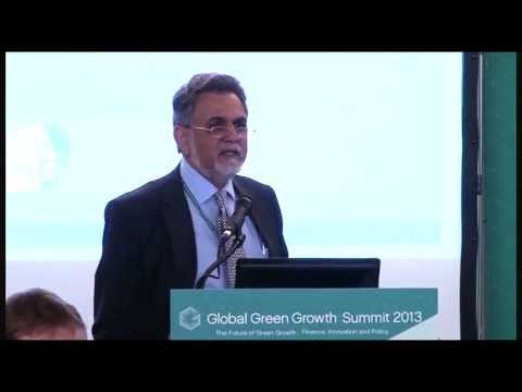 GGGS 2013 Parallel Session II - Fiscal Instruments for Green Growth