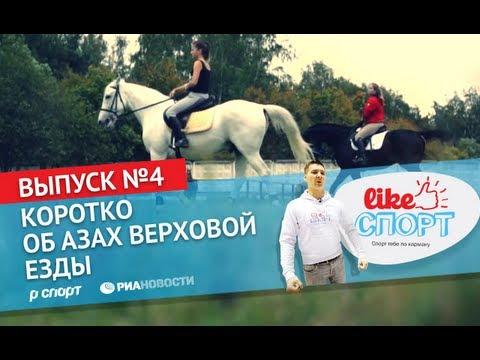 LikeСпорт на коне: коротко об азах верховой езды