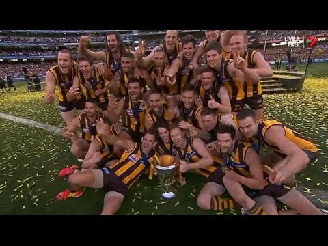 AFL 2014: Grand Final - Hawthorn highlights vs. Sydney