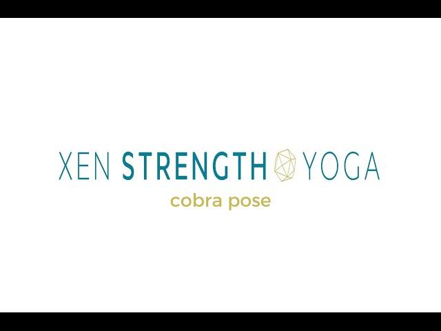 Beginning VInyasa- Backbend instruction /  Cobra Pose (yoga with weights)