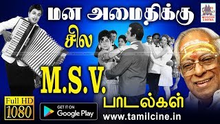 MSV Melody Songs | Music Box