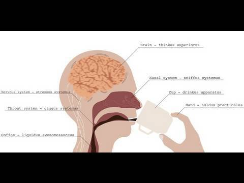 How Caffeine Affects Your Brain | Jupiter@Nite BETA8
