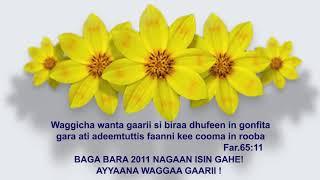 Baga Bara 2011nagaan isin gahe! AYYANAA GAARII  | PRESENCE TV CHANNEL|WITH PROPHET SURAPHEL DEMISSIE