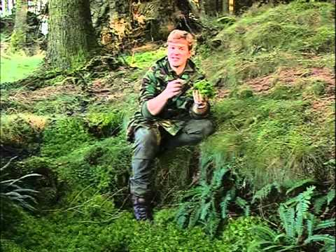 Ray Mears' Extreme Survival S02E04 - Military Survival