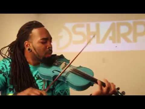 Animals  Martin Garrix (Violin Cover)