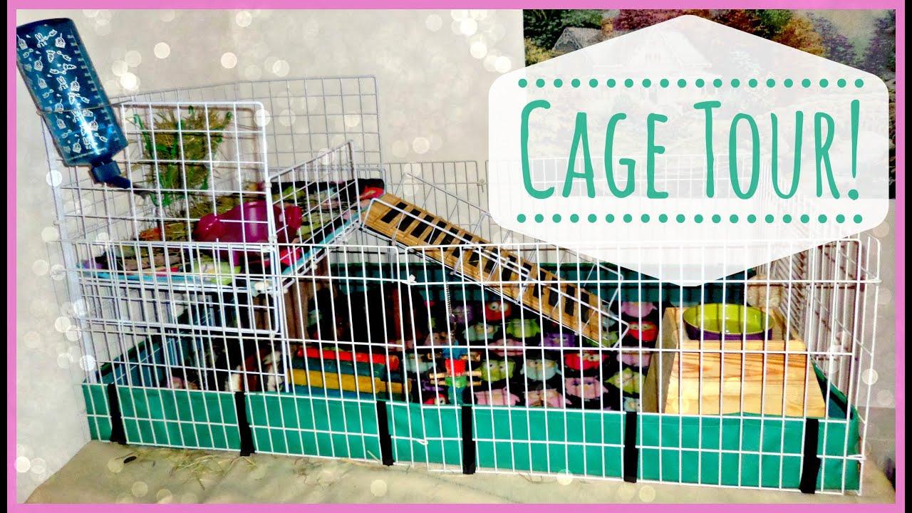 Cute Guinea Pig Cages Guinea Pig Cage Tour
