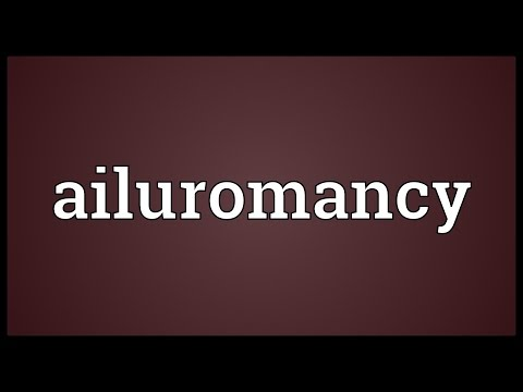 Header of Ailuromancy