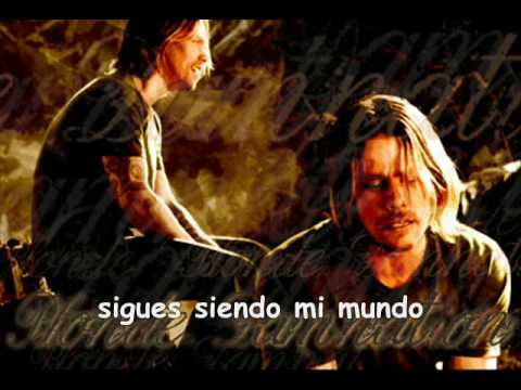 Alter bridge - In loving memory Español