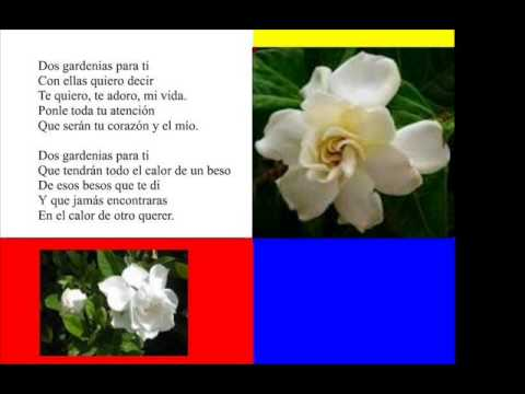 Isolina Carrillo - Dos Gardenias