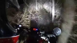 Black Dog Night Ride 2016 - Long