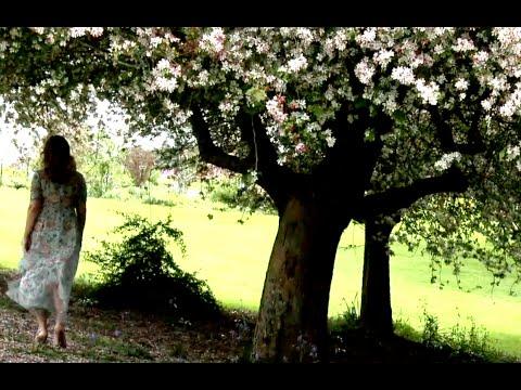 Festival of Ridvan   --  عید رضوان - عید گل و وصل یار
