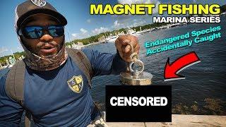 MAGNET FISHING MARINAS Pt. 2 Rare Fish Caught   Monster Mike Fishing