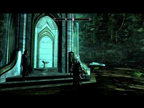 Dawnguard: Only Snow Elf in all of Skyrim