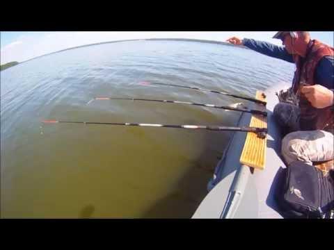 a elita официальный сайт рыболовные снасти
