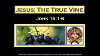 Jesus the True Vine Part 2 of 2 by Whole Armour Ministries 2014