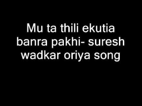 Mu ta thili ekutia banra pakhi- suresh wadkar oriya song