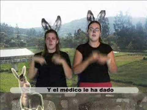"""Canción adaptada a la Lengua de signos """"A mi burro"""""""